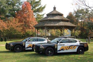 Two police cars in field near gazebo