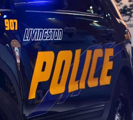 "Close up of the side door of a Livingston Police car, showing police patch and ""LIVINGSTON POLICE"