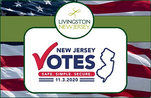 NJ Votes by Mail on November 3, 2020