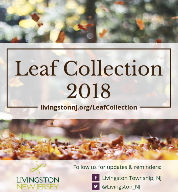 Leaves falling with &#34Leaf Collection 2018&#34: livingstonnj.org/LeafCollection + Facebook and Twi