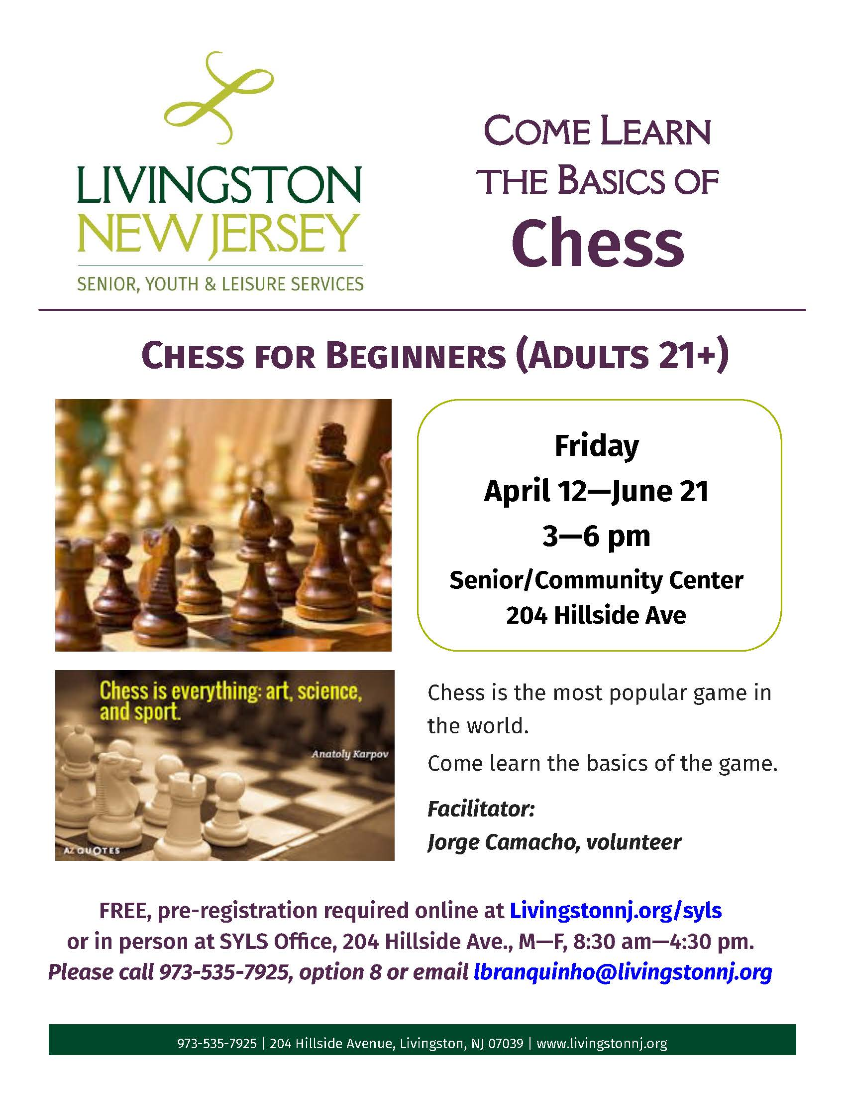Chess Flyer