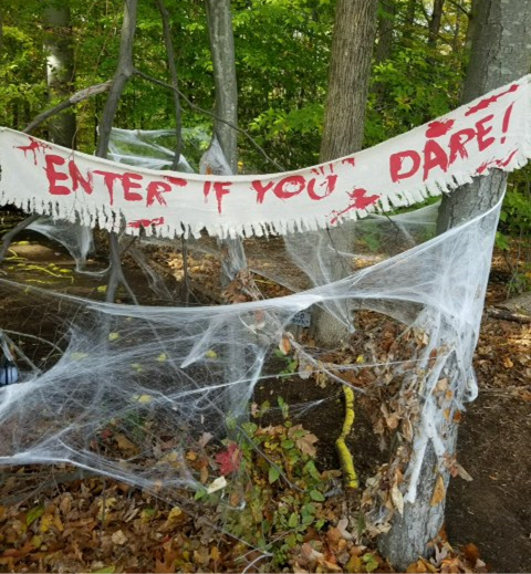 "Photo of the woods during the Haunted Walk, with cobwebs around the trees and ""ENTER IF YOU DARE&"