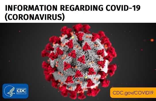 Coronavirus virus single image